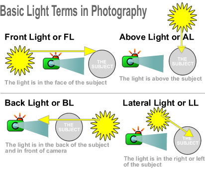 terms-light-in-photo.jpg