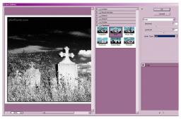 Infrared Pictures from Normal Images
